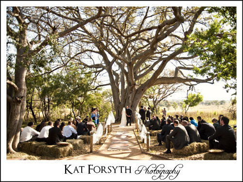 Kuthaba Lodge Tree wedding