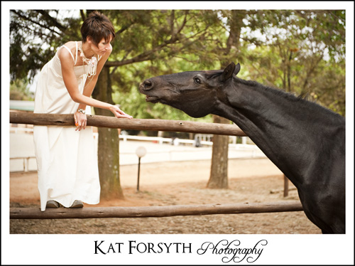 WEdding Trash the Dress Photographer Gauteng