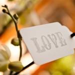 Shepstone Gardens Wedding: Cleo & Darren