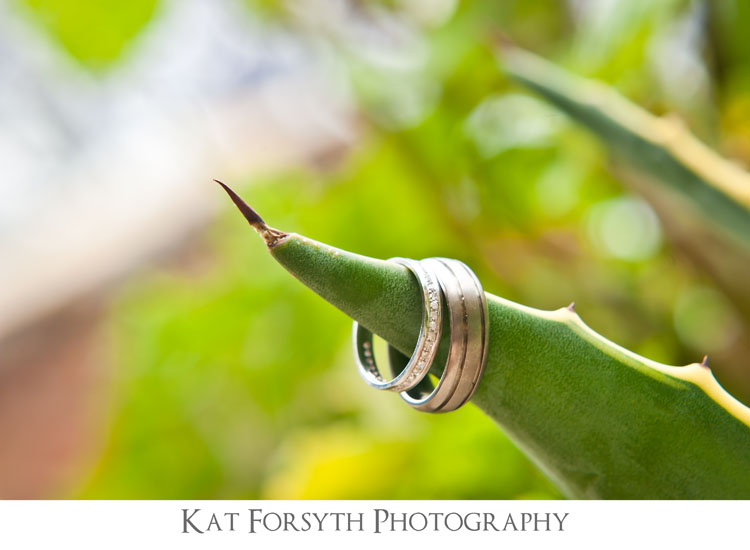 wedding rings creative cactus