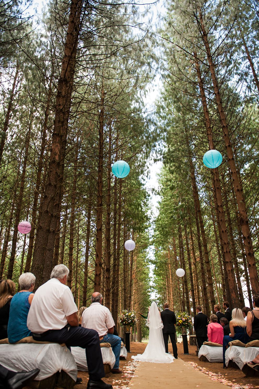 Anja-Mike-Forest-Wedding-South-Africa-42