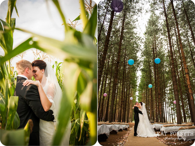 Forest wedding cornfield wedding photos