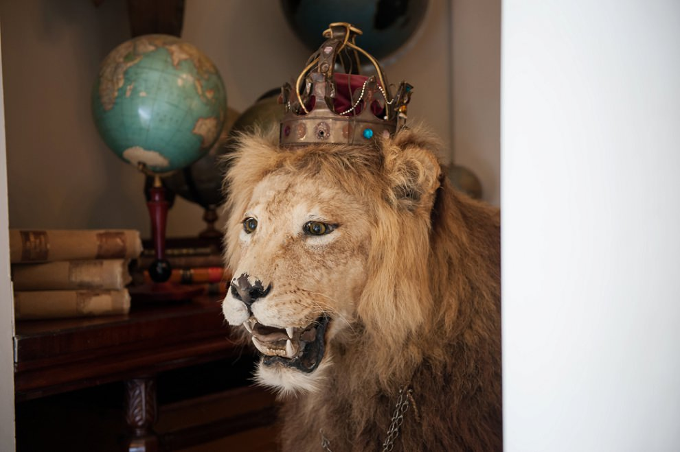 Lion in a crown at Aynhoe Park wedding